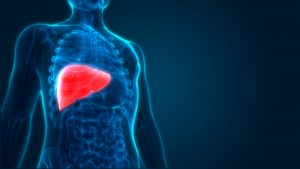 Alcohol Abuse Liver Damage